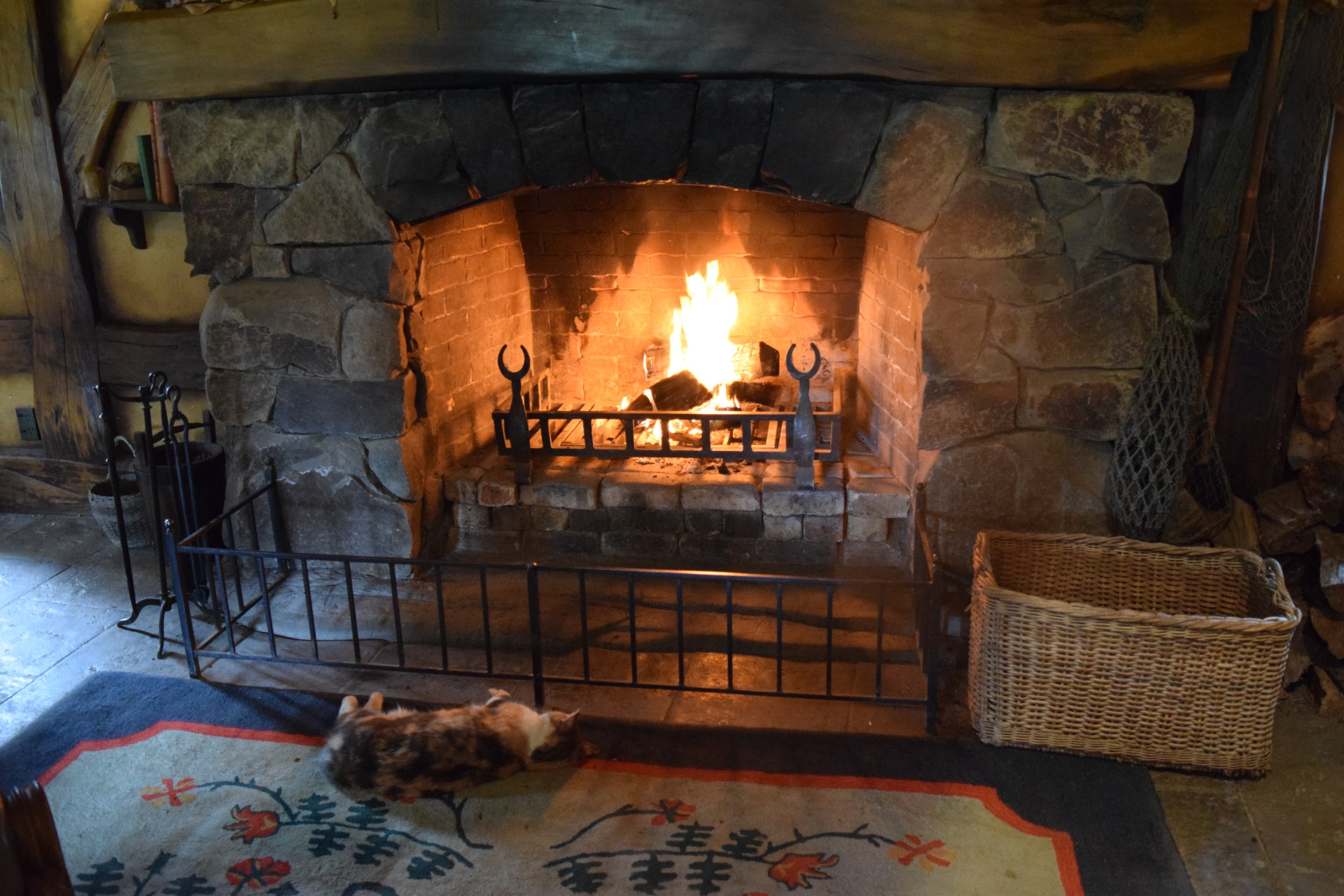 """Pickles in Front of the fire at the Green Dragon Inn """"hobbiton"""""""