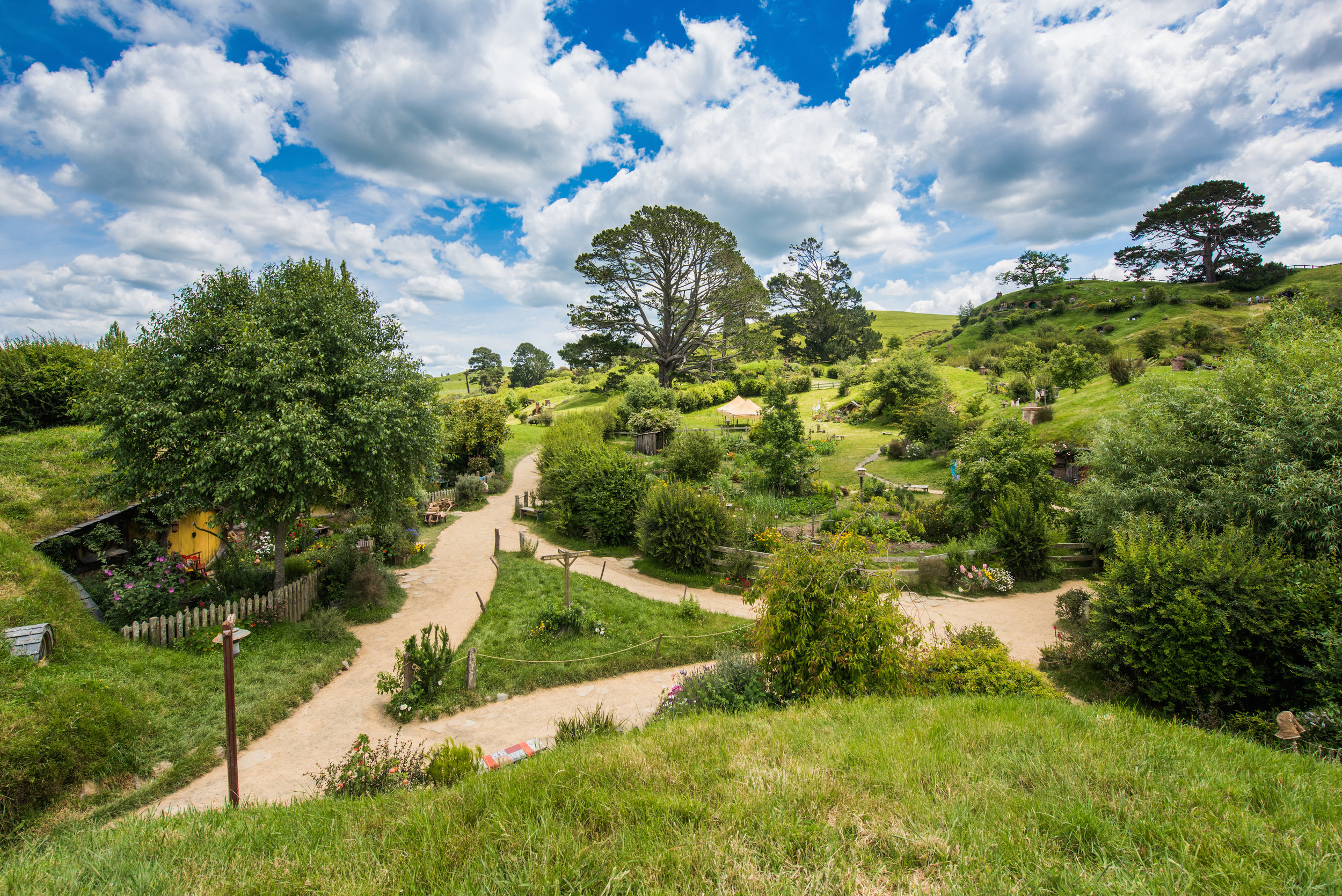 Hobbiton_Photography (7 of 17).jpg