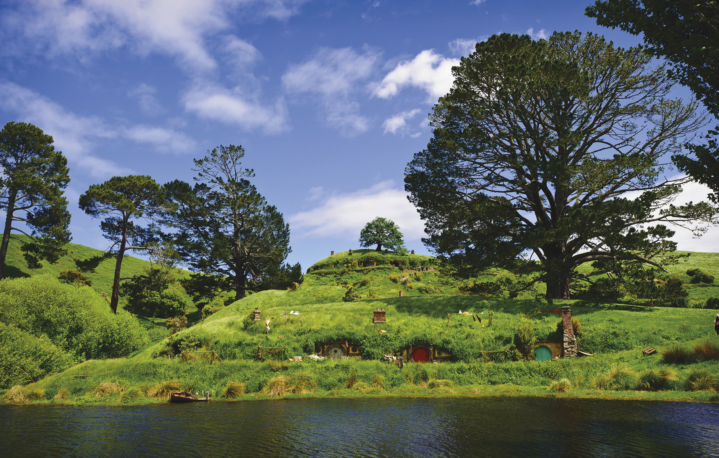 Hobbiton - Huge party tree on the right and the little 'fake' tree in the middle on the hill.jpg