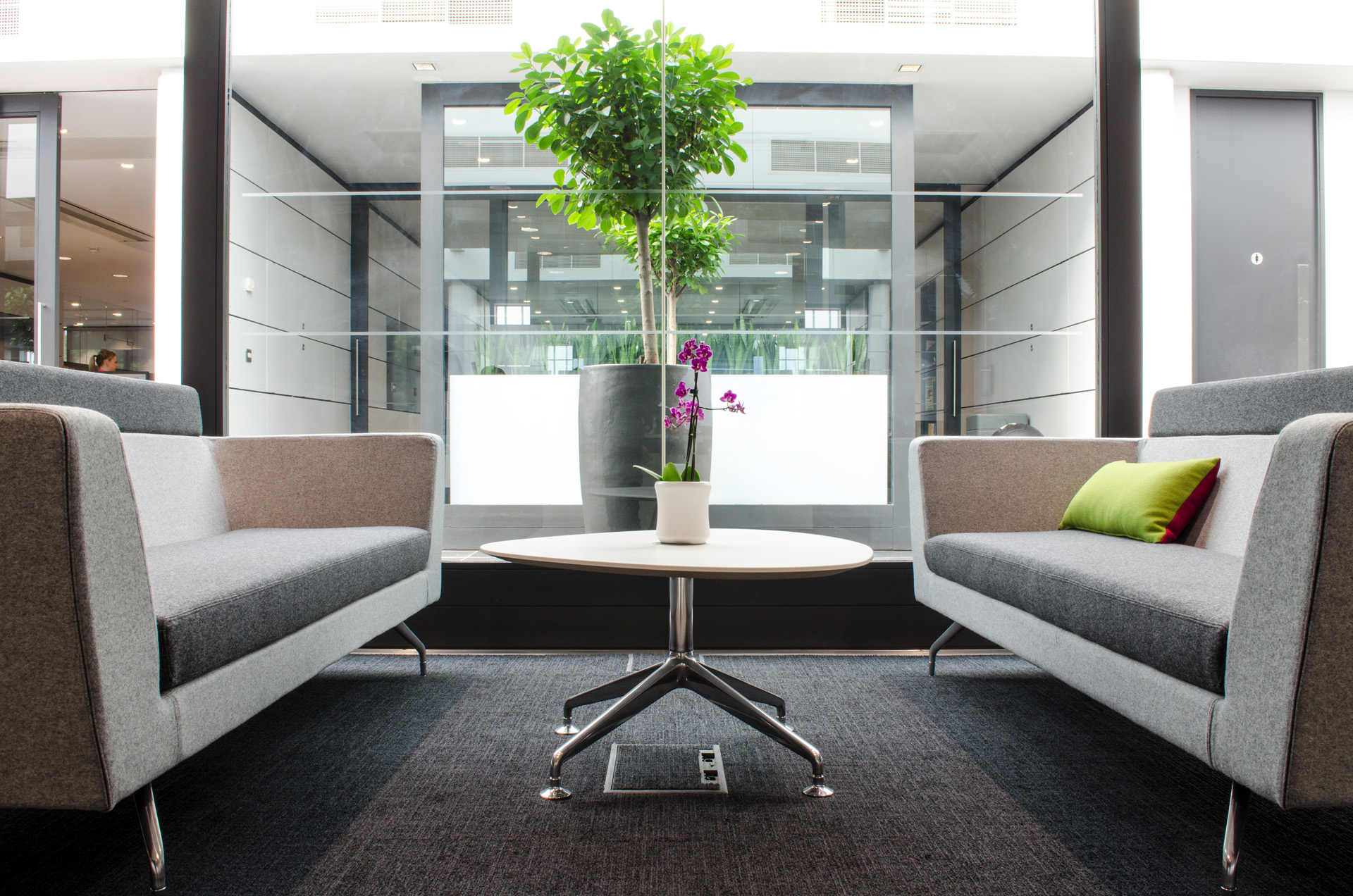 Using Interior Design to Enhance the Trust of Patients in the Healthcare Design