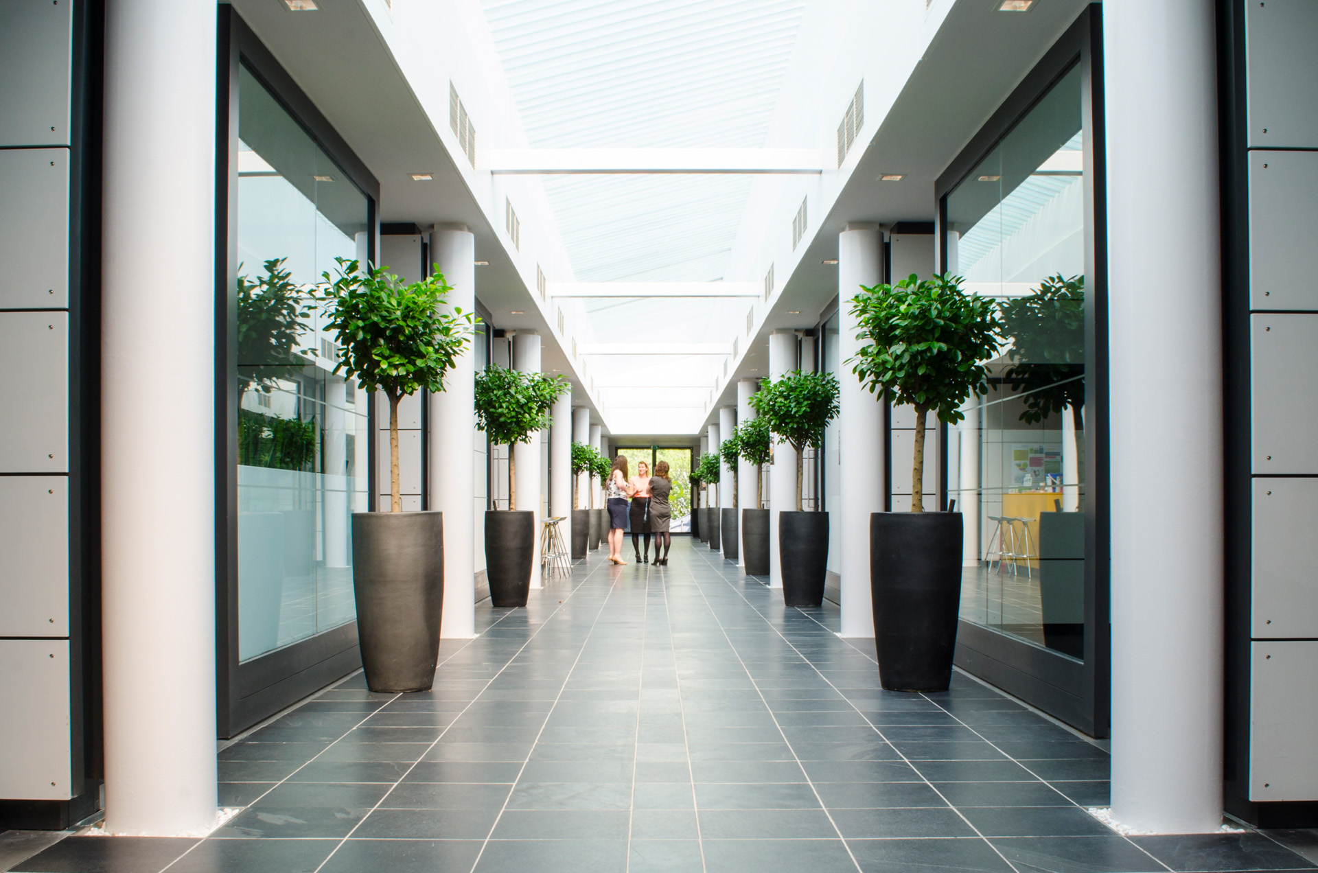 A bright and welcoming design for Ashfield Healthcare