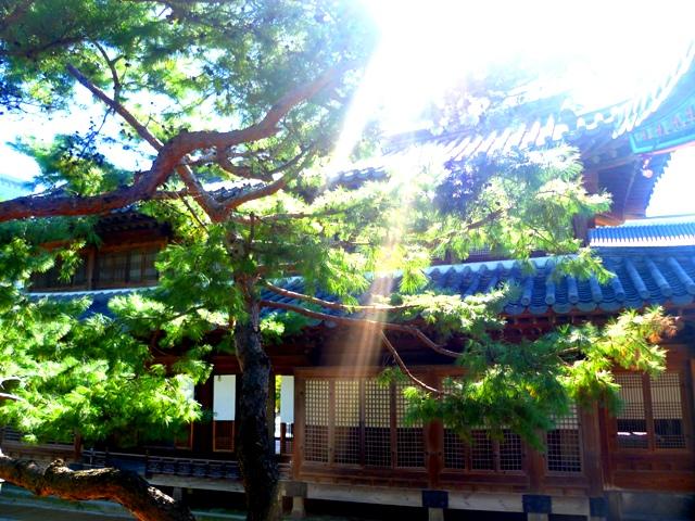 Winter sunshine warming the plentiful palaces of Seoul...