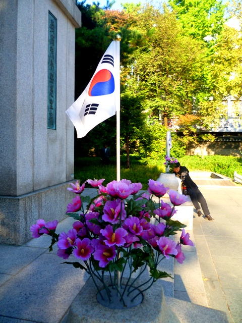 Seoul - flowering with national pride...