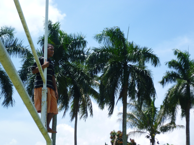 Palm trees and rugby - two bastions of Fijian life...