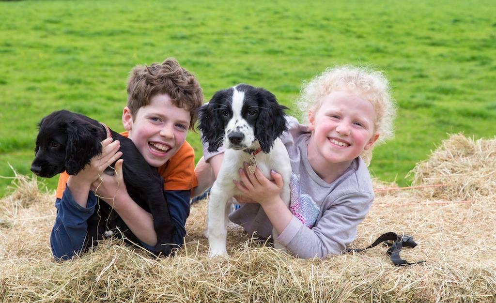 Children and puppis.jpg