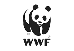 World Wildlife Fund  is one of the largest conservation organizations, founded in 1961 to stop the degradation of the planet's natural environment and to build a future in which humans live in harmony with nature. WWF recognizes human rights as central to achieving effective, equitable conservation and development outcomes.