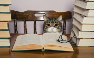 books-author.jpg
