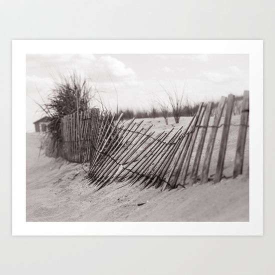 fences-at-redhook-prints.jpg