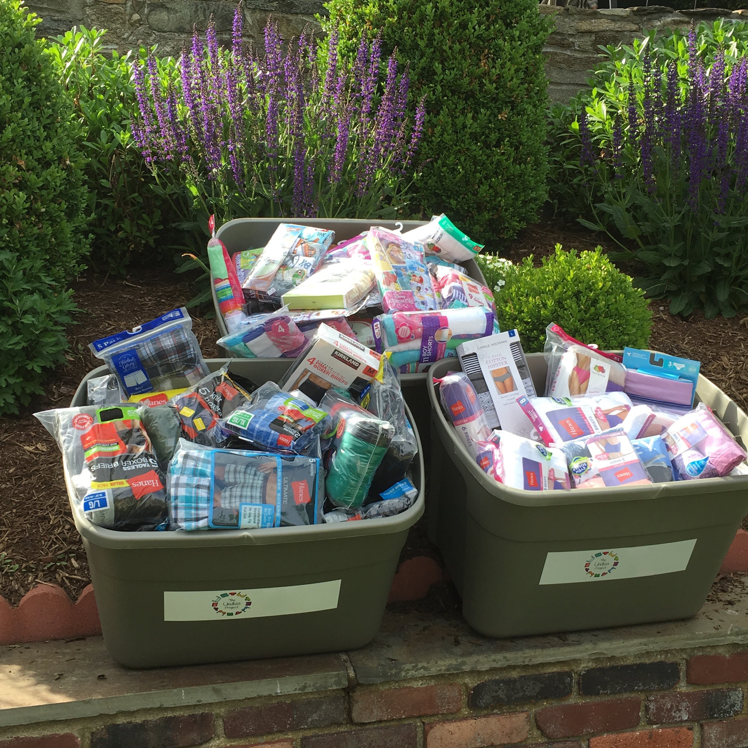 The Undies Project Donations