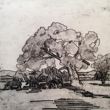 Oak on Oak Island