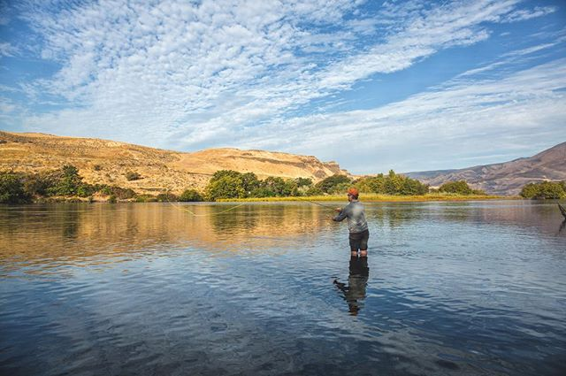 Deschutes River, OR steelhead fishing with @rshawpdx  #steelhead #deschutesriver #deschutesrivertrail #bestofcentraloregon #traveloregon #oregonexplored #exploreoregon #flyfishing #fishinglife #riverrunsthroughit #deschutes #cascadiaexplored #cascade #speycasting #wildoregon #pnwlife #pnwonderland #liked #followmeto #orvisflyfishing #echorods #redbandtrout #rainbowtrout #sagerods