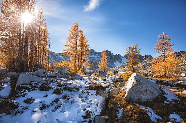 Larch season in the Enchantments with friends. #rei1440project #explorewashington #cascadiaexplored #enchantments #hikelover #backpacking #backcountry #alpinelakes #larch #yellowlarch #hikingadventures #backpackers #pnwlife #pnwonderland #bestofwashington #liked #followmeto #snowing #pnwcollective #bestcoast #cascadia #aasgardpass #colchucklake #stuartlake #alpine #alpinemeadows