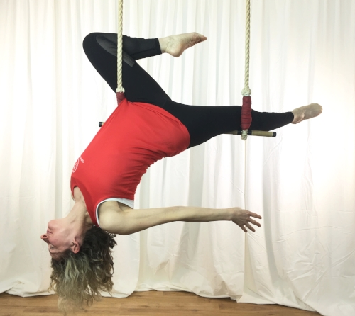 Tanya trapeze gazelle feb 2018.jpg
