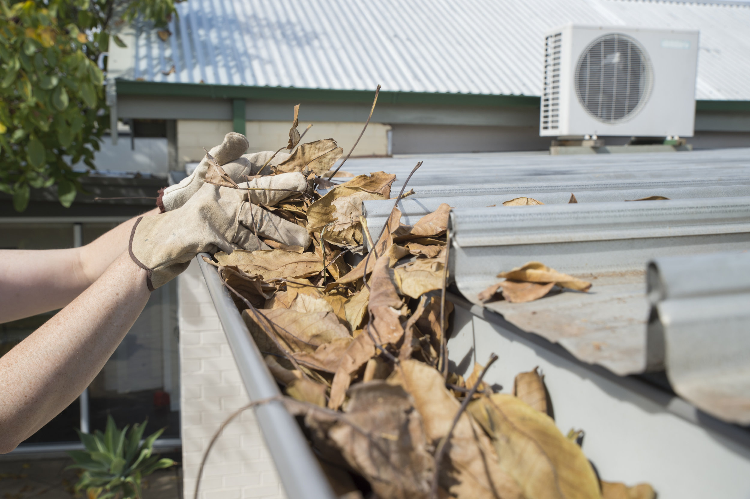 Jacksonville Gutters Cleaning