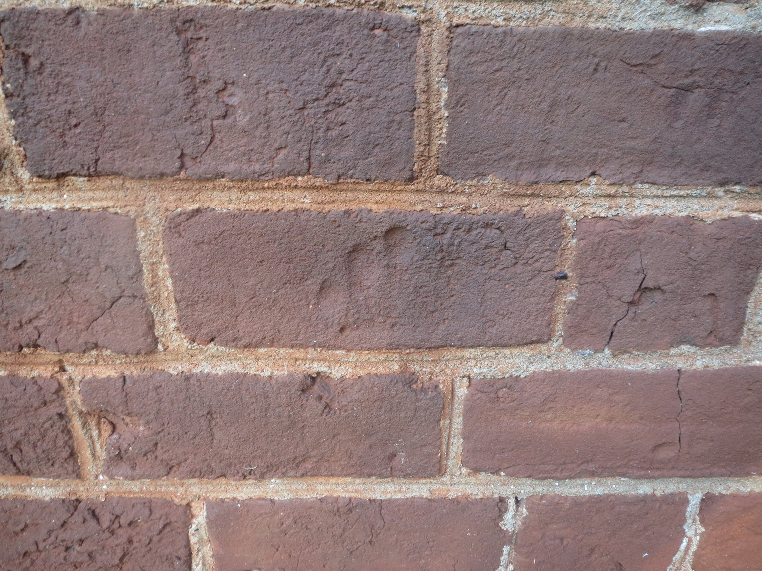Child's Hand Print in Wet Brick