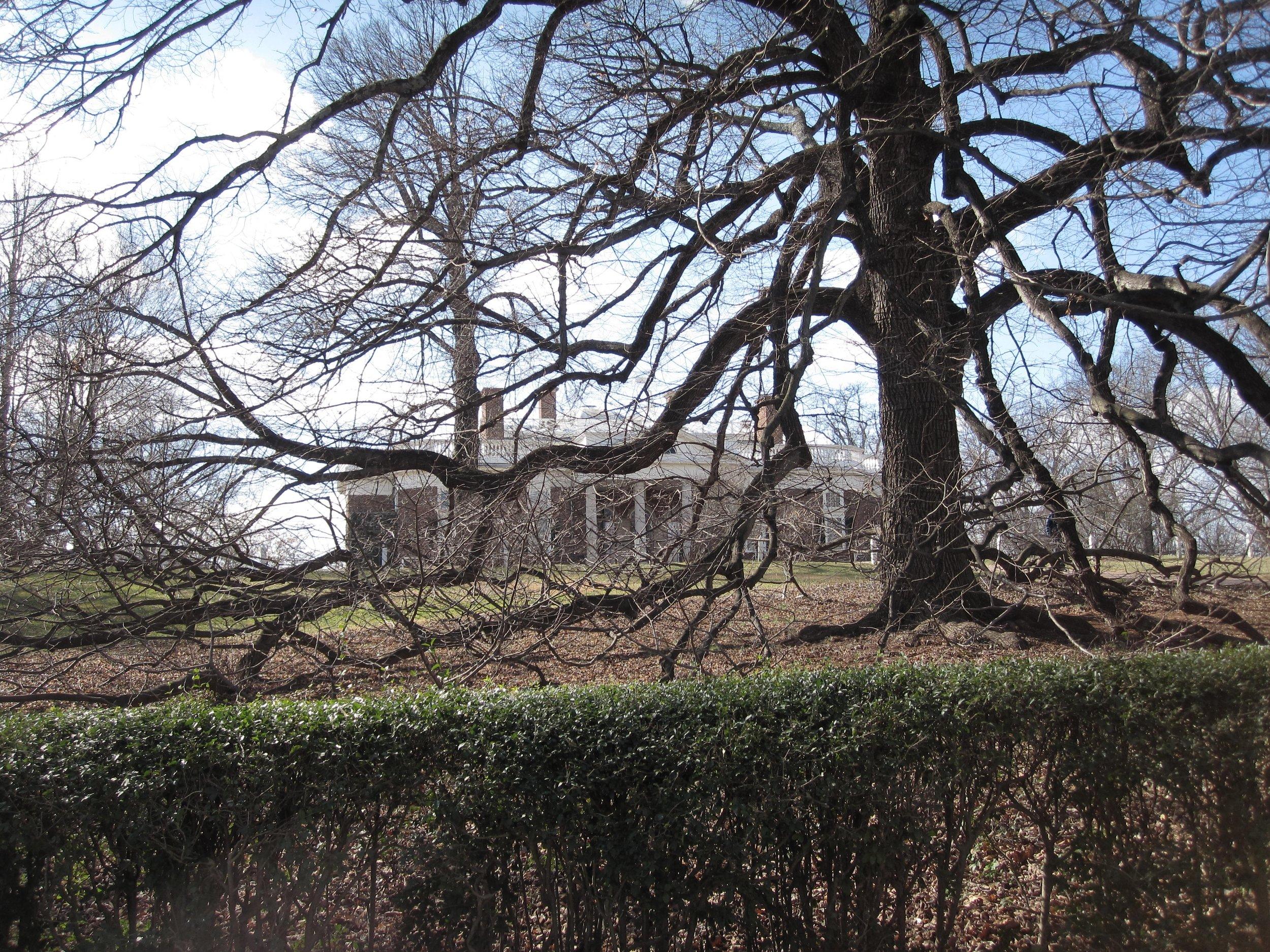 Monticello in Winter
