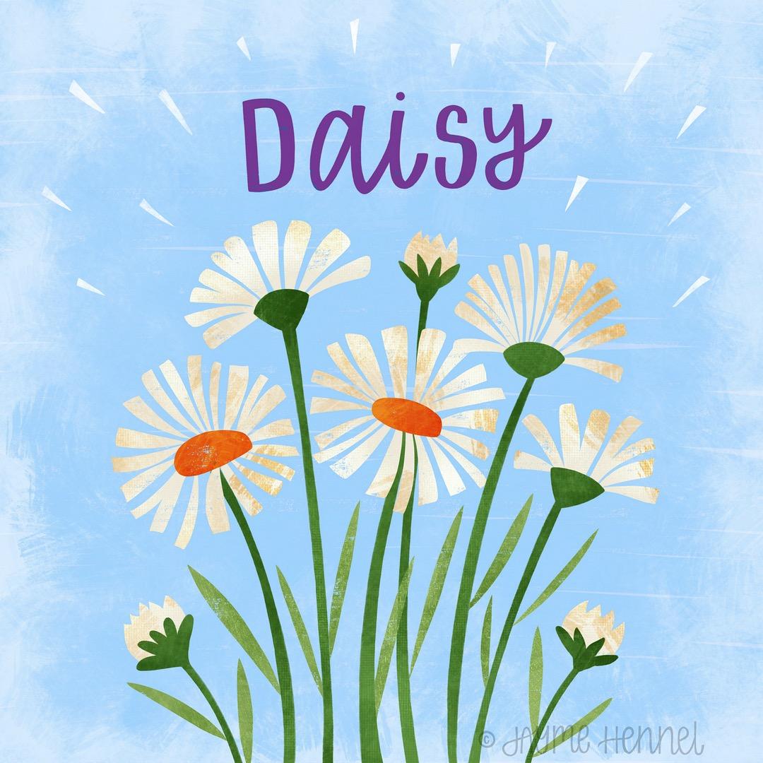 5-daisy.JPG