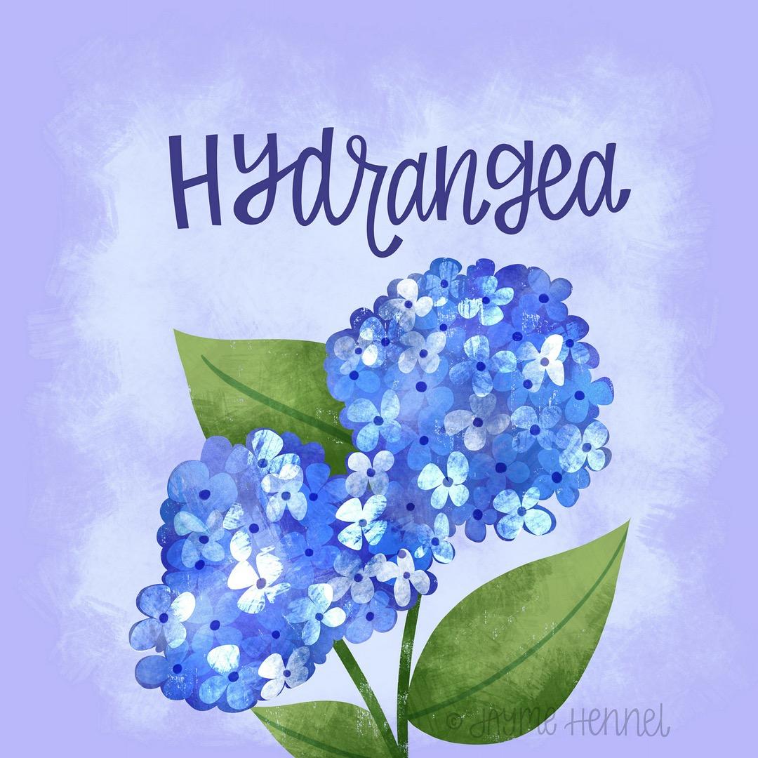 9-hydrangea.JPG