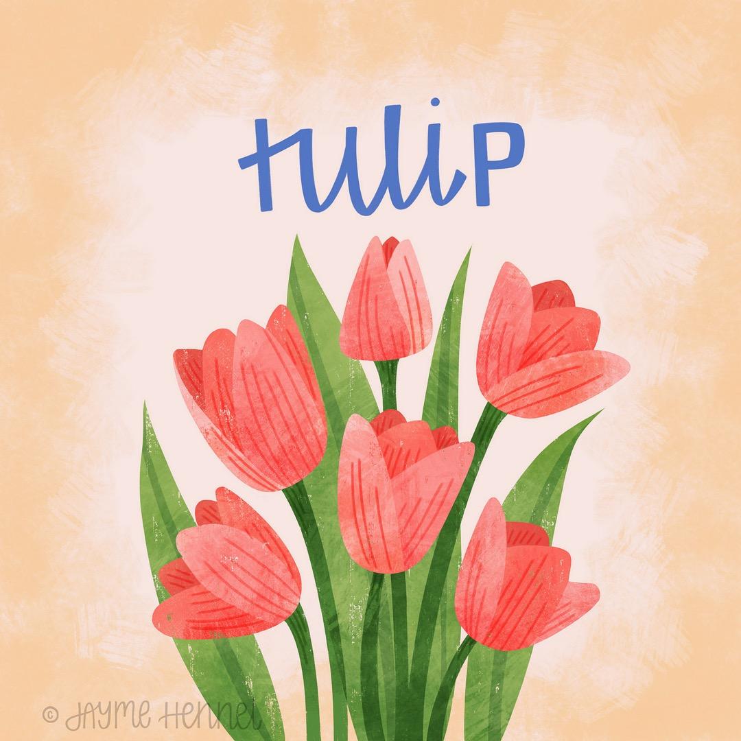 10-tulip.JPG