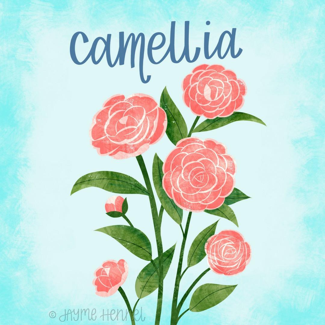 12-camellia.JPG