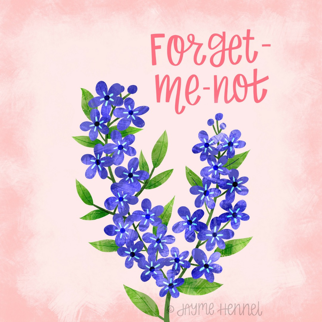 13-forget me not.JPG