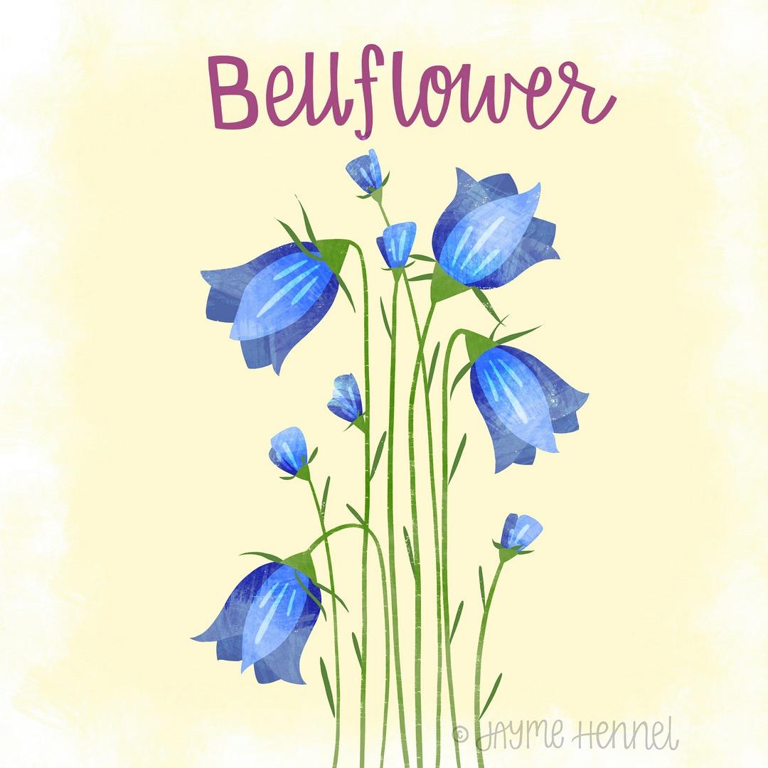 14-bellflower.JPG