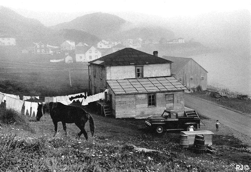 Horse, house, car - Gaspé, 1954
