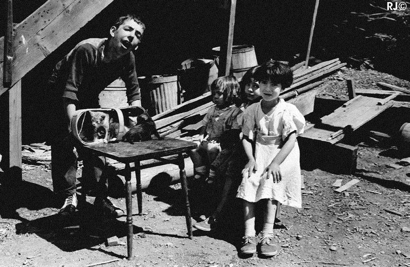 Kids playing - Gaspé, 1954