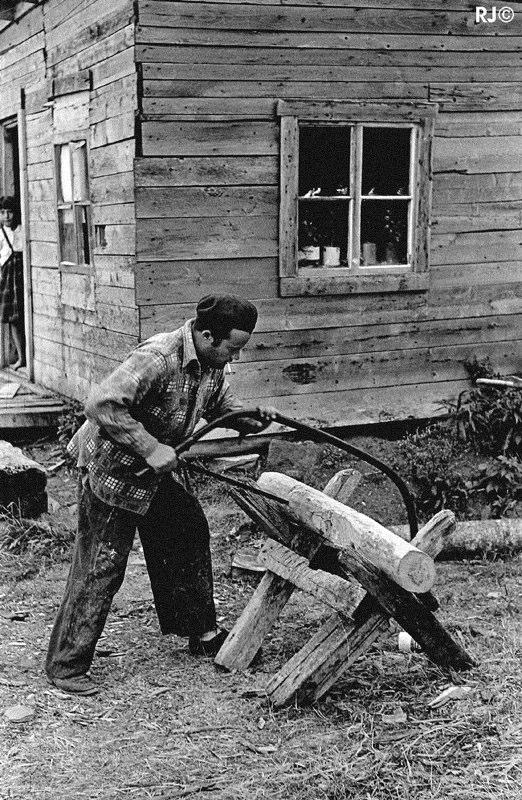 Man cutting log - Gaspé, 1954