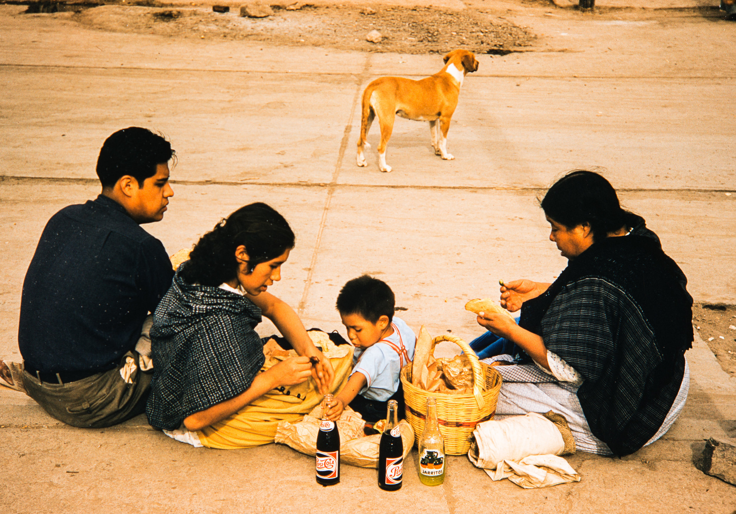 Family sitting on street with dog, Mexico, 1957