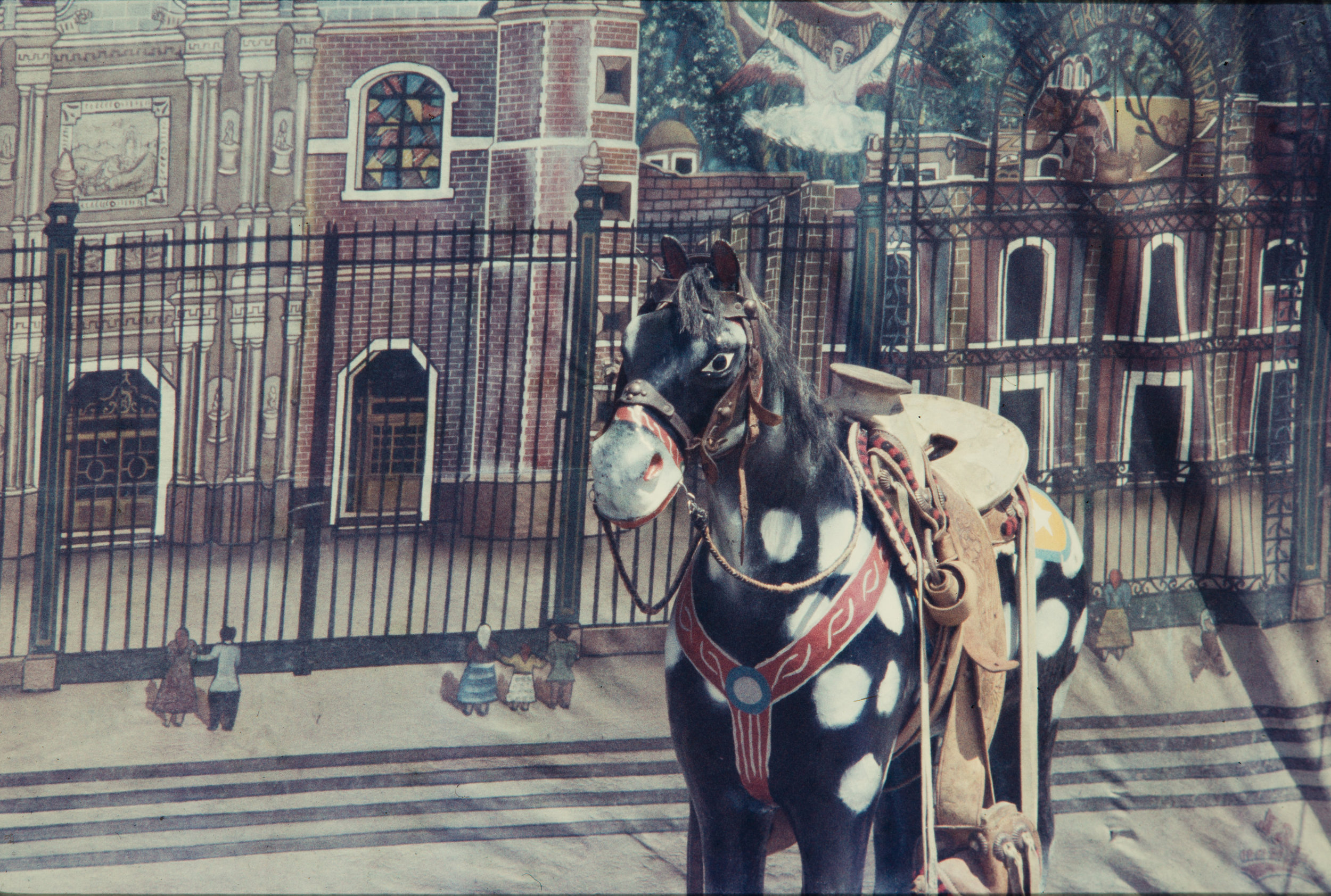 Spotted horse, Mexico, 1957