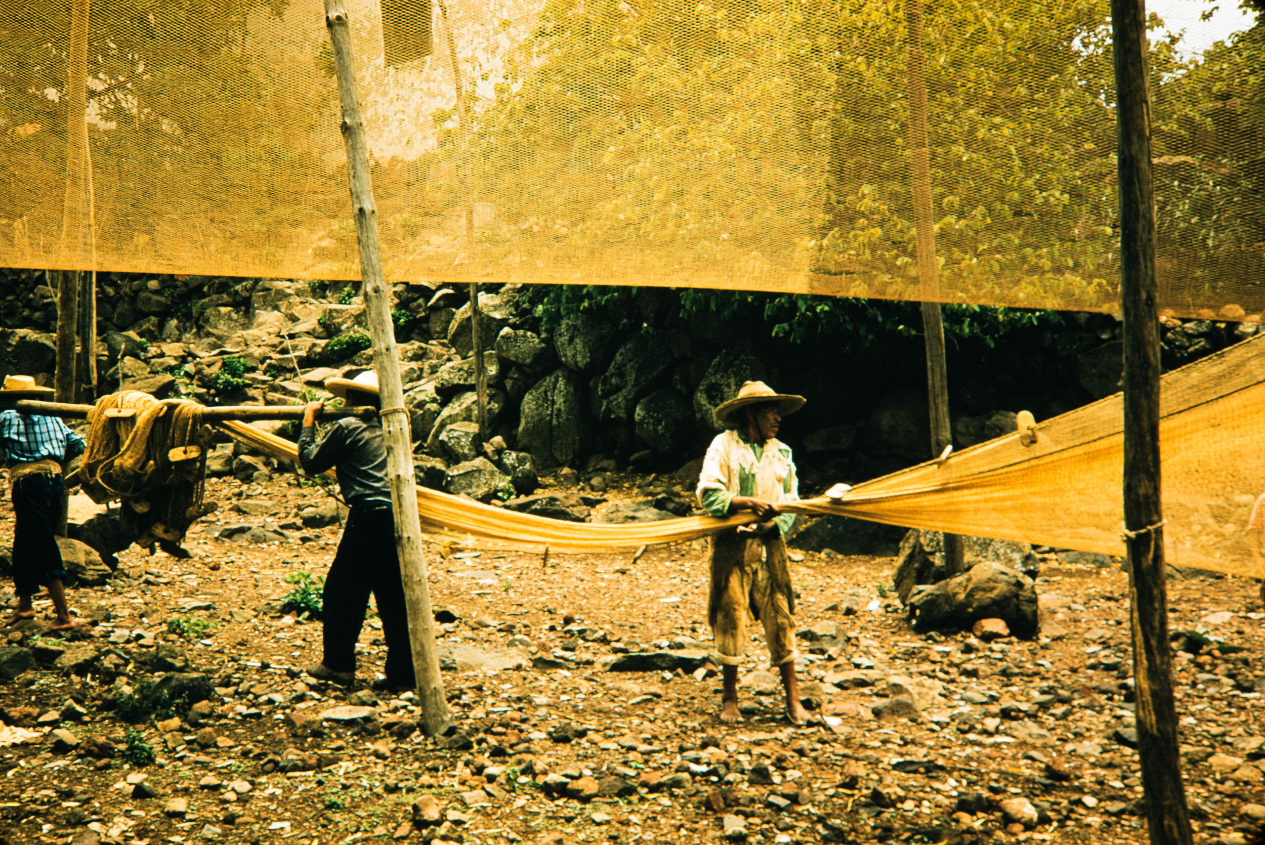 With fishing nets, Mexico, 1957