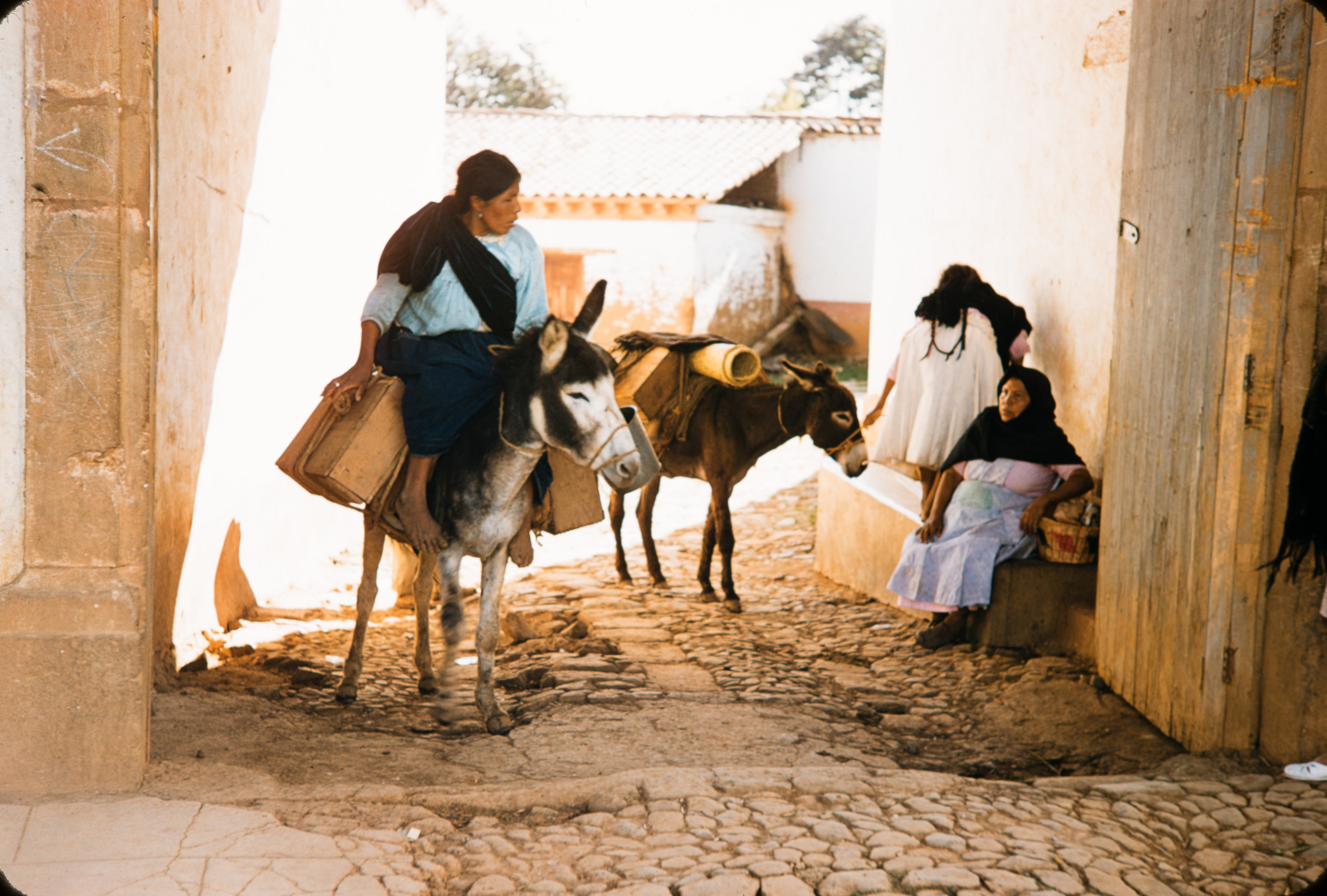 Woman on donkey, Mexico, 1957