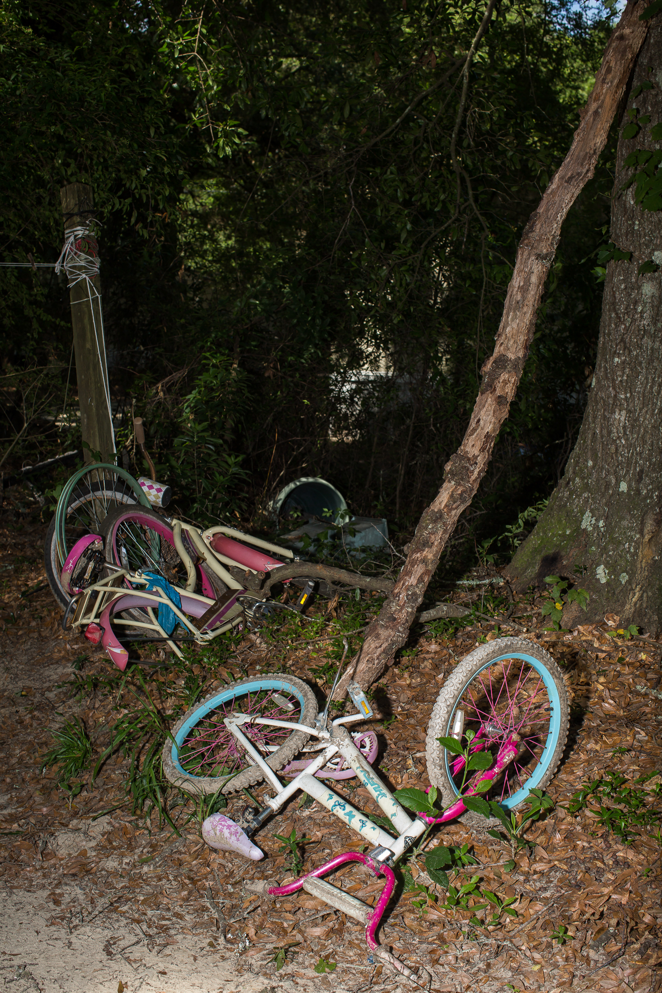 Children's bicycles in a heap by the trailer in Ravenel Mobile Home Park, where Betty Mungin, 55; Alexis Mungin, 29 and her unborn twins; and Armani Mungin, 8 were shot and killed in May 2016.