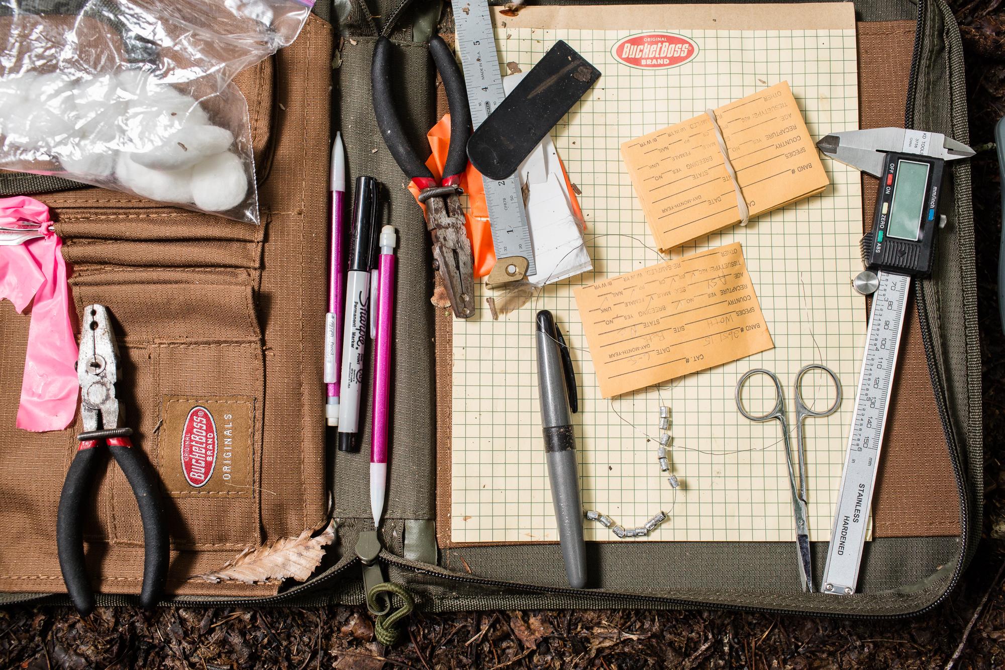 Photo of bird banding tools