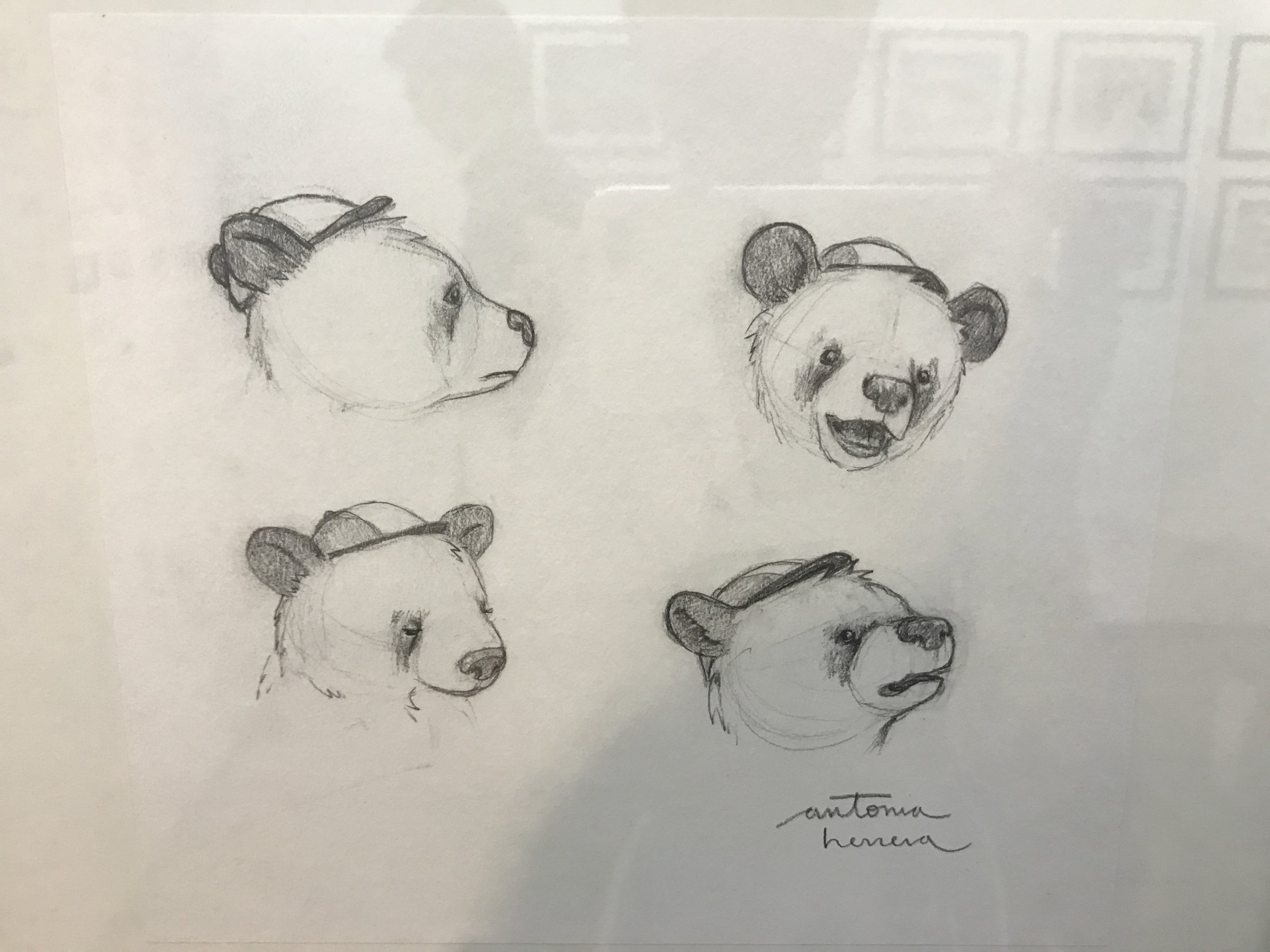 Bear emotions sketch by Antonia Herrera