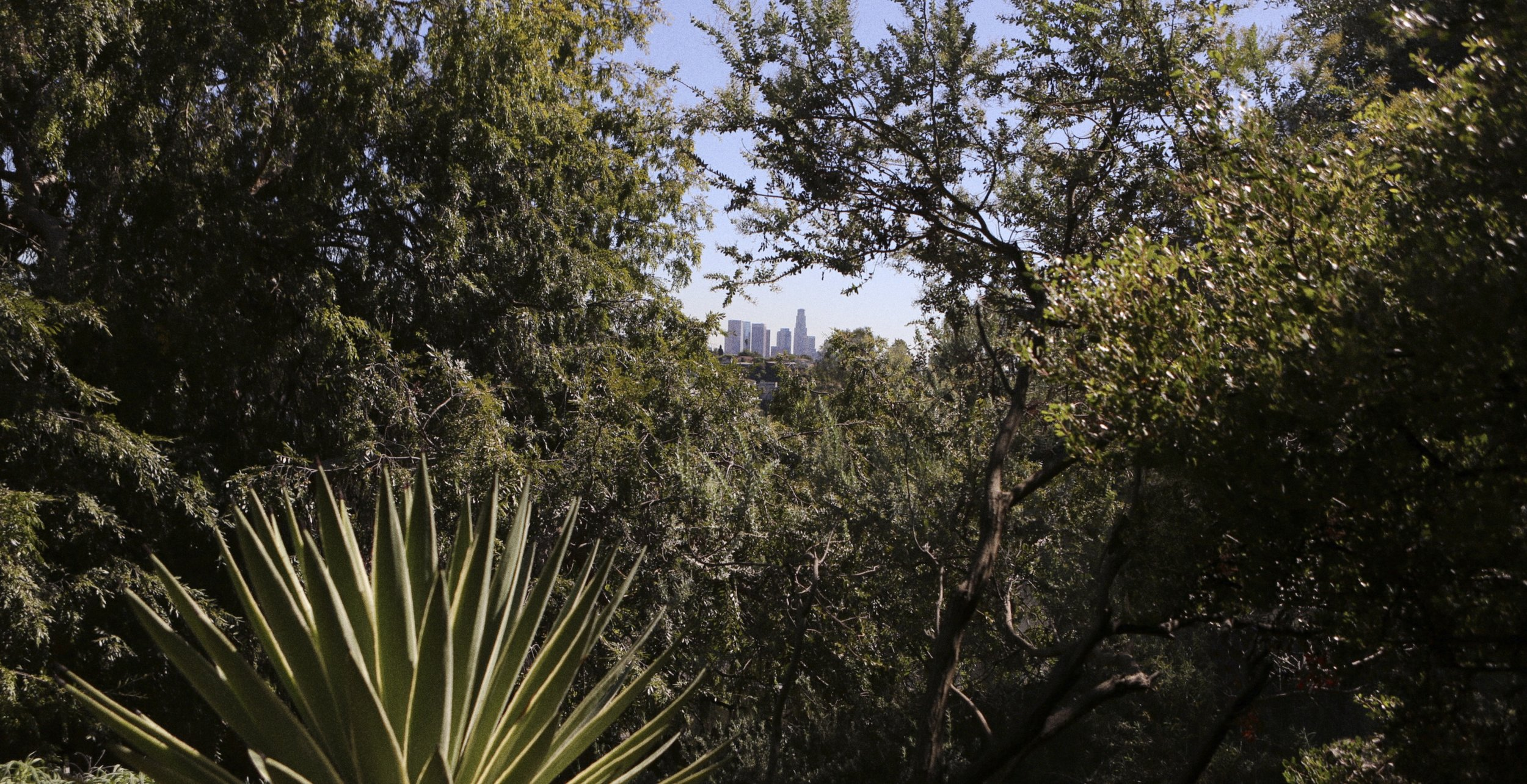 View over downtown LA from the garden. Image taken from the project ON PAPER #2, featuring the artist Miranda July. Photo: Andreas Omvik/Henrik Nielsen