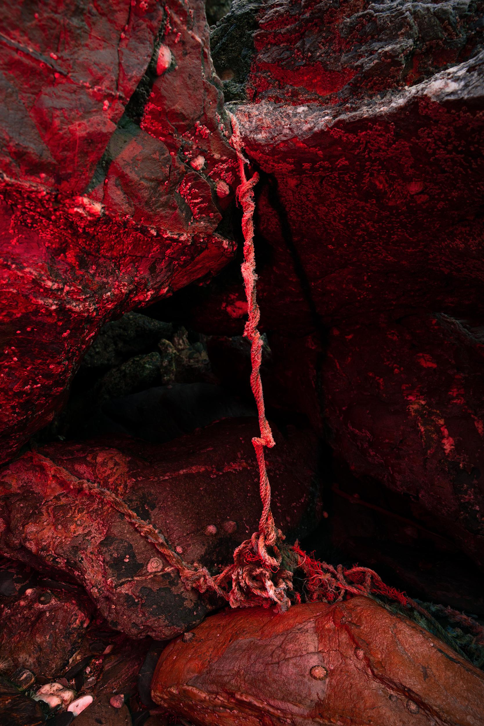 The Bridge by Elena Helfrecht from Revolv Collective's exhibition Intro:spective.
