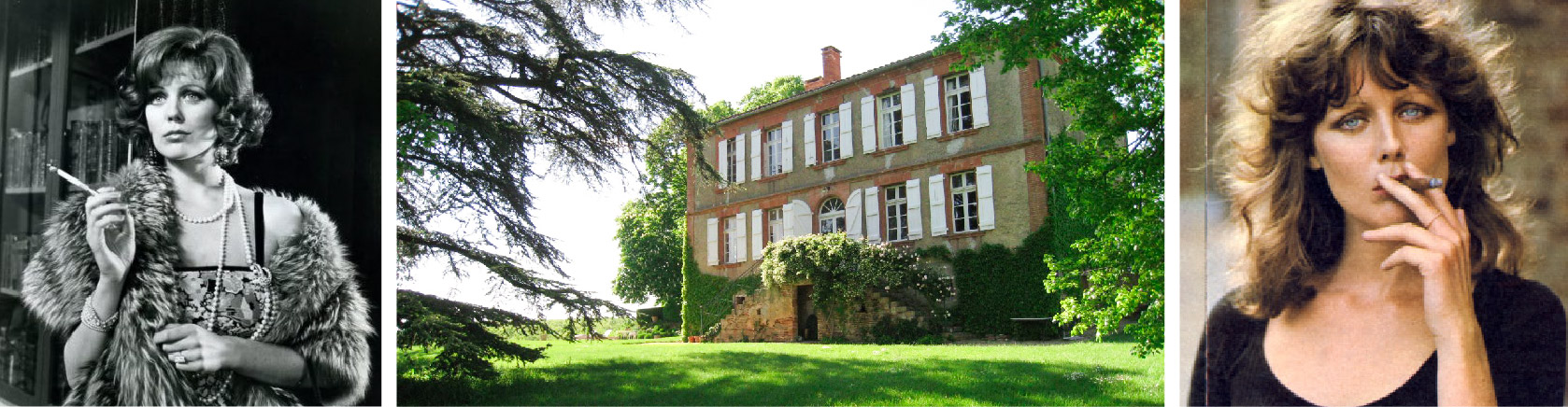 Fiona Lewis - Fiona's French Chateau