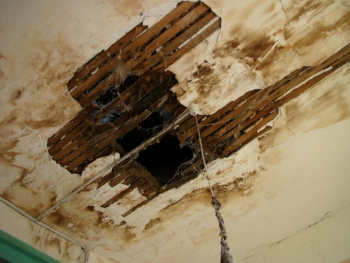 Fiona Lewis - French Chateau Ruin Ceiling