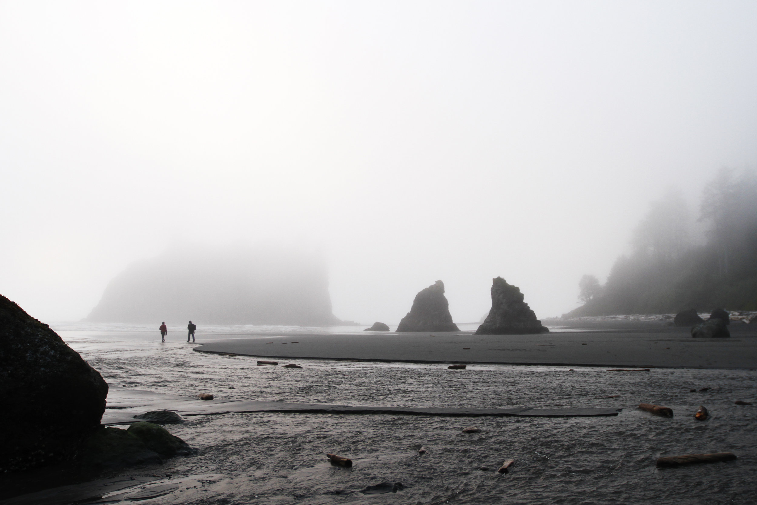 Two hikers dissolve into the mist    Olympic National Park