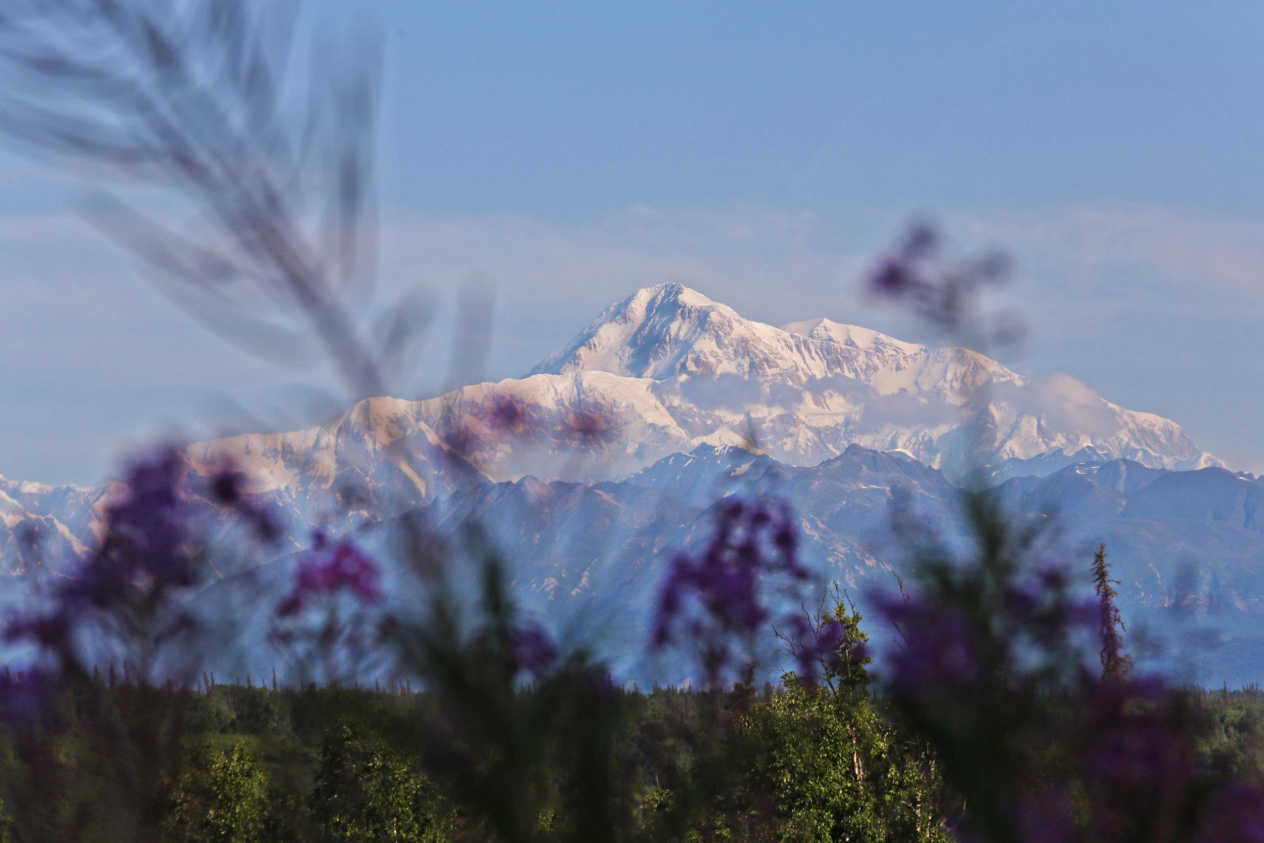 Alaska_July2019_78.jpg