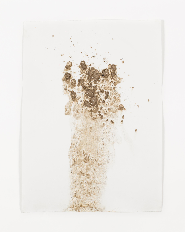 "2016  wissahickon dirt on paper  11""x15"""