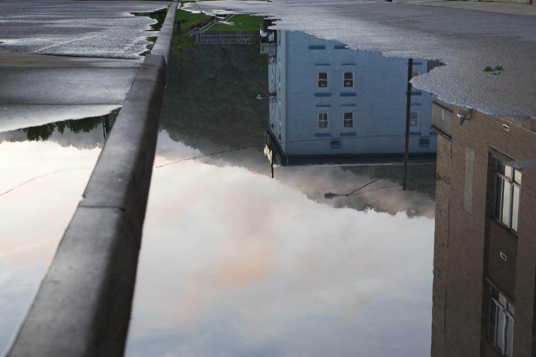 reflectionwilliamsonIMG_1705.jpg