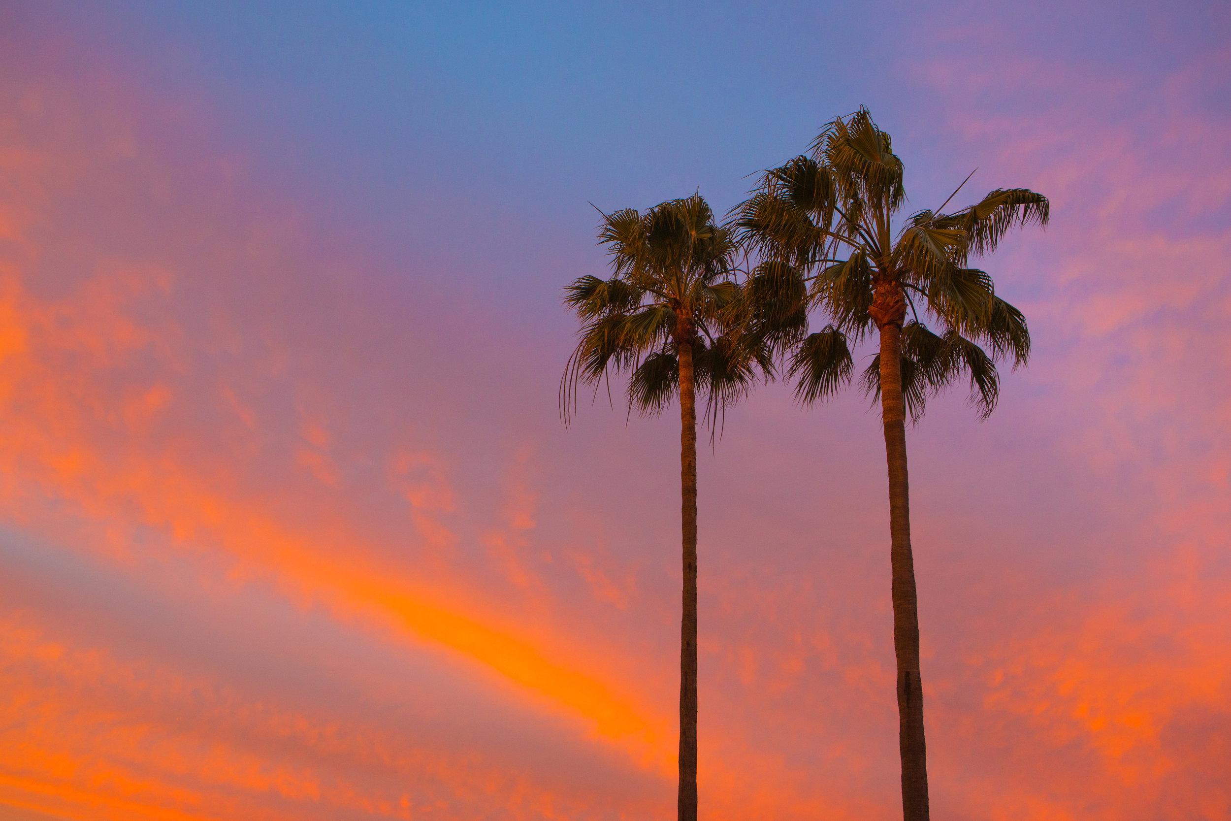 II Palms Sunset Hi.jpeg