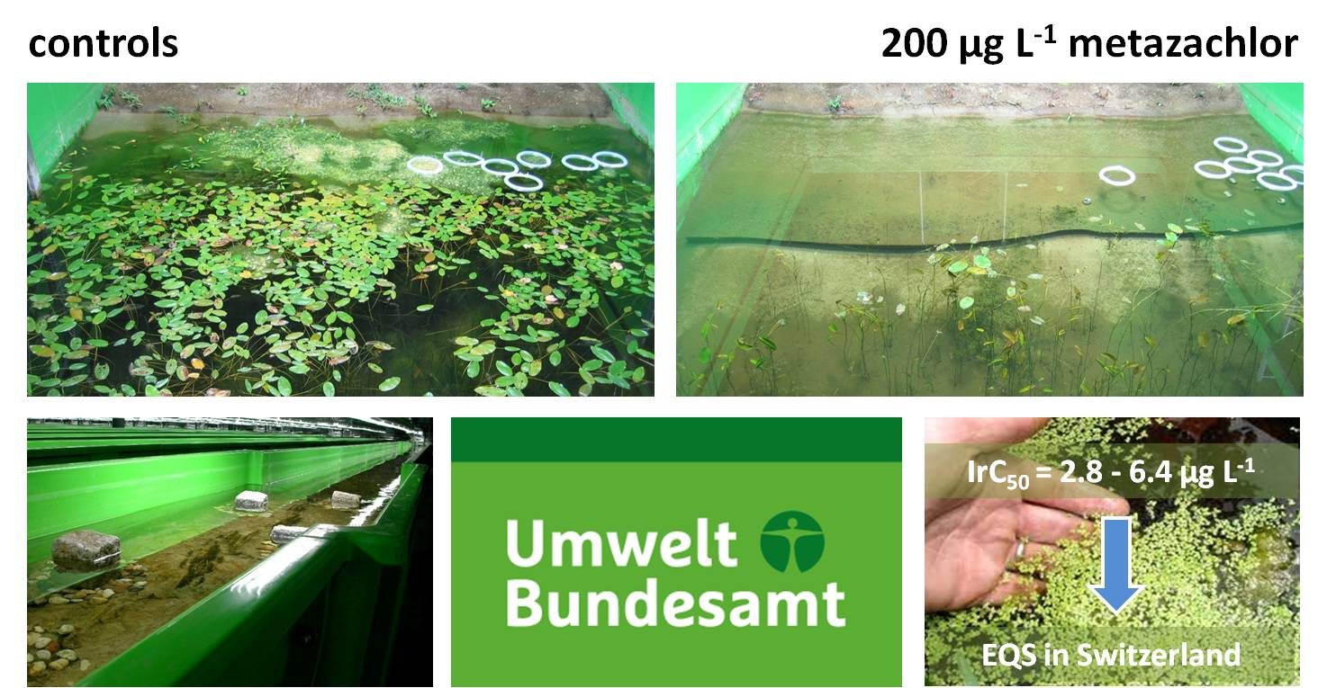 mesocosm study with the herbicide metazachlor
