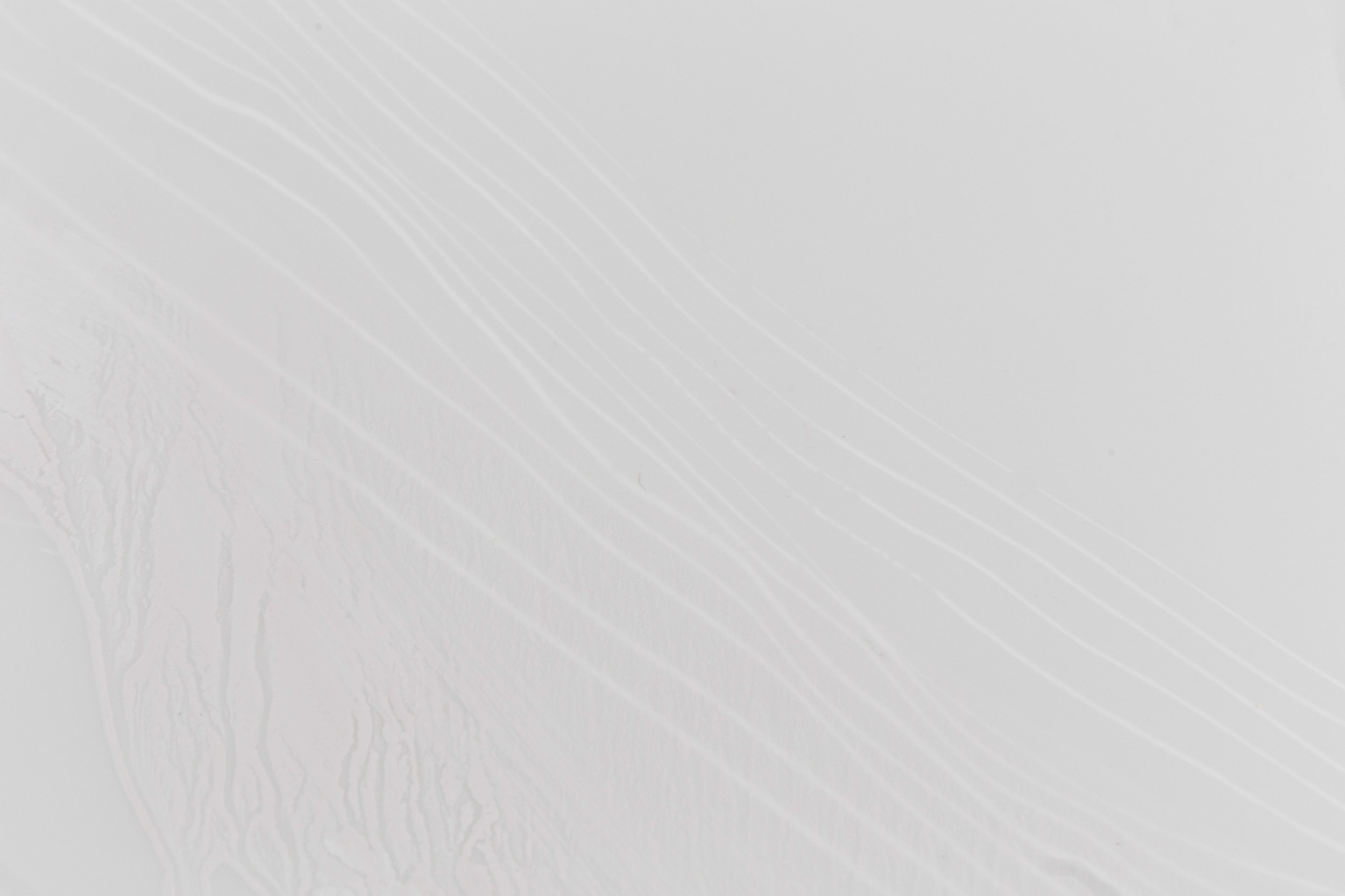LulaJapan-14.jpg
