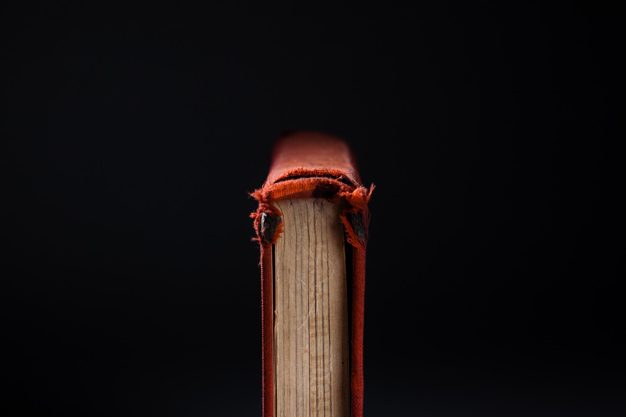 Book_Website_Ready-6.jpg