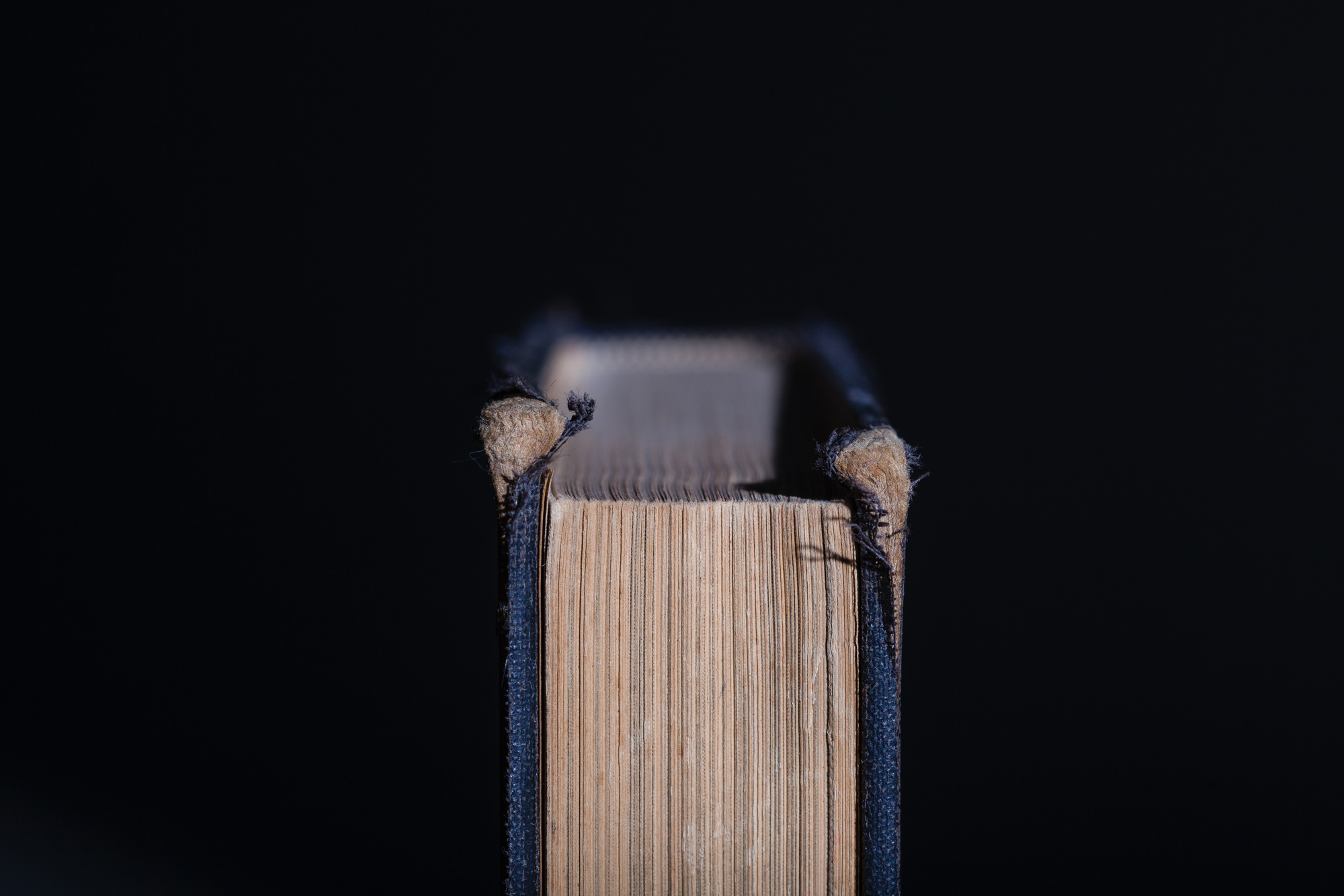 Book_Website_Ready-3.jpg