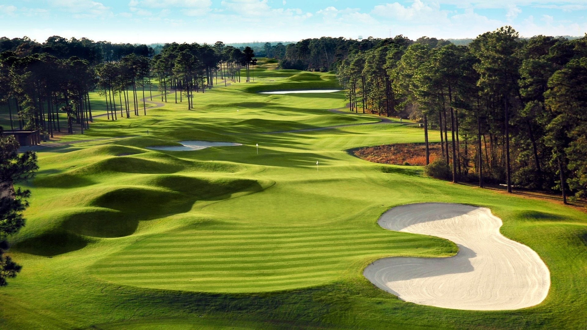 fields-green-golf-course-courses-fields-nature-high-quality-picture.jpg